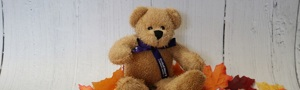Medium bear with purple bow
