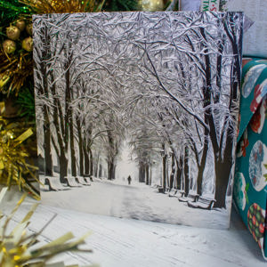'A Winter Walk' Christmas Card