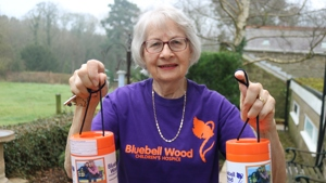 Meet the hidden heroes who have dedicated 18 years to Bluebell Wood
