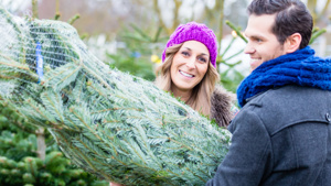 Top tips to keep your real Christmas tree fresh and fragrant